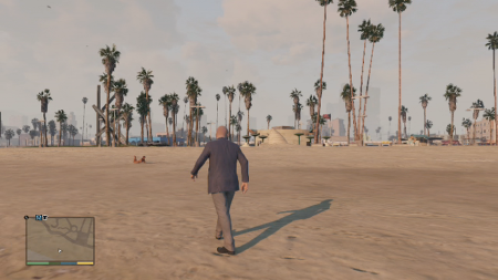 Grand Theft Auto V 11